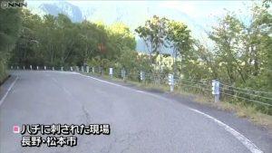 長野県松本市 蜂に刺された現場