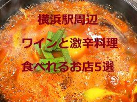 横浜駅周辺ワインと激辛料理が食べれるお店!5選