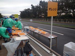 湘南国際マラソンオレンジ