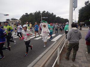 湘南国際マラソン大根