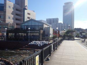 スターバックスコーヒーショッパーズプラザ横須賀シーサイドビレッジ店
