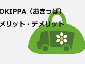 OKIPPAのメリット・デメリット