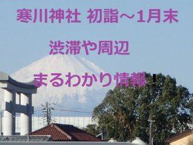 寒川神社 初詣~1月末 渋滞や周辺まるわかり情報