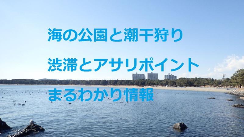 海の公園と潮干狩り 渋滞とアサリポイント まるわかり情報