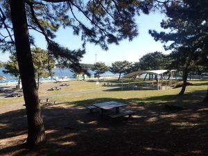 海の公園 バーベキュー場所