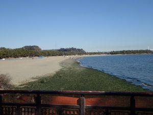 海の公園 波打ち際