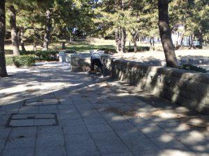 海の公園 水道 砂遊び洗い場