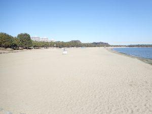 海の公園 砂浜