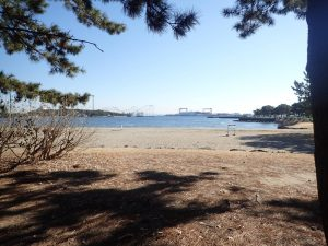 海の公園 歩道 ジョギングコースから見た風景