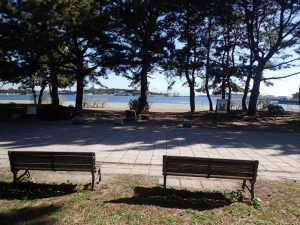 海の公園 カップルベンチ