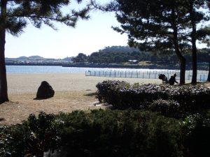海の公園 ベービーカー ランチ 昼食