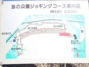 海の公園 ジョギングコース