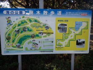海の公園 樹木散歩道 コース