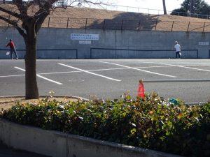 海の公園 テニス壁打ち