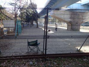 海の公園 犬の遊場 ドッグラン