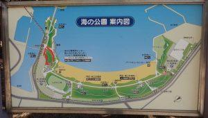 海の公園 機木散歩道