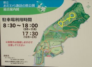 県立おだわら諏訪の原公園 修景池から調整池