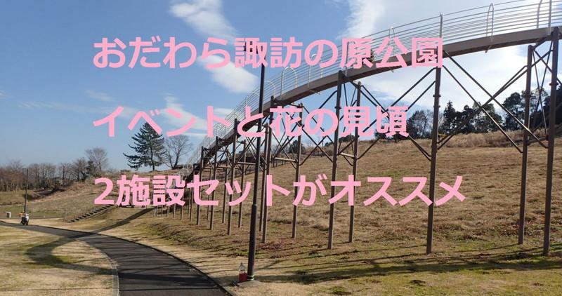 県立おだわら諏訪の原公園 イベントと花の見頃 2施設セットがオススメ