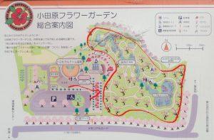 小田原フラワーガーデン 渓流の梅園 マップ