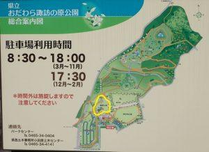 県立おだわら諏訪の原公園 展望広場