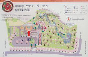 小田原フラワーガーデン トロピカルドーム 入口