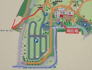 小田原フラワーガーデンまでの近道