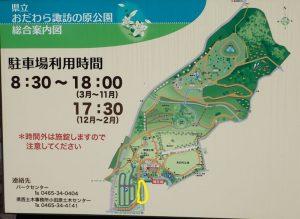 県立おだわら諏訪の原公園 ツツジ
