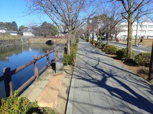 小田原城址公園 堀沿いベンチ
