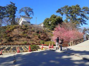 小田原城址公園 常盤木橋