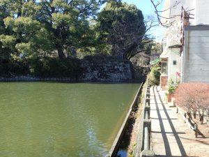 小田原城址公園 二の丸東堀