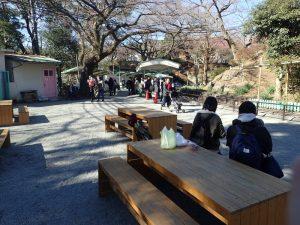 小田原城址公園 こども遊園地 ベンチ