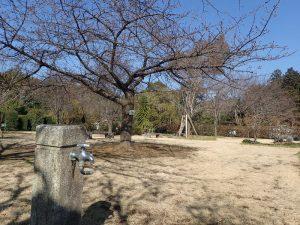 小田原フラワーガーデン 井戸水