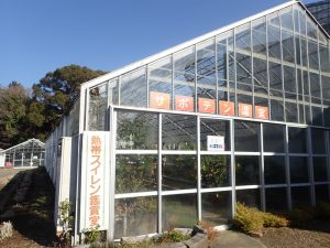 小田原フラワーガーデン 展示温室