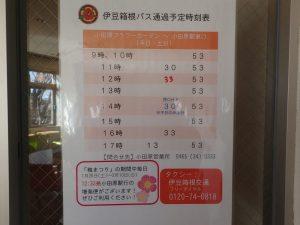 小田原フラワーガーデン 梅まつり 期間限定 バス増初便