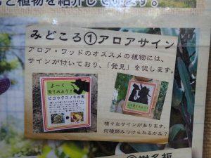 小田原フラワーガーデン 見どころポスター