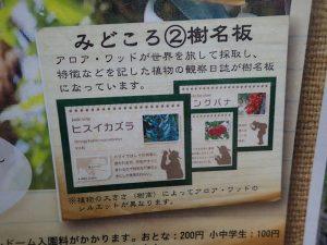 小田原フラワーガーデン 見どころ