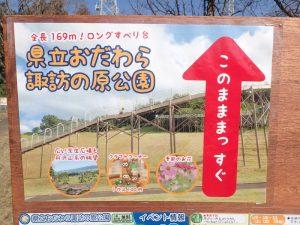 小田原フラワーガーデン 眺望ルート