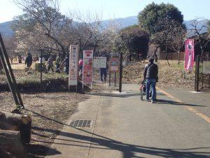 県立おだわら諏訪の原公園 駐車場からの近道