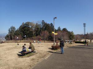 県立おだわら諏訪の原公園 タコあげ