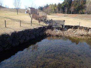 県立おだわら諏訪の原公園 陽だまりの丘 修景池