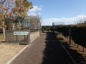 県立おだわら諏訪の原公園 パークセンター2F入口
