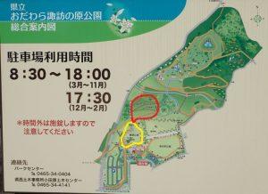 県立おだわら諏訪の原公園 スロープデッキ