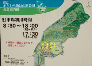 県立おだわら諏訪の原公園 クロッカスの花 地図