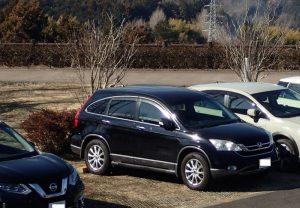 県立おだわら諏訪の原公園 緑化型駐車場