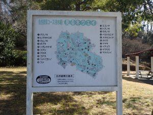 こどもの国横浜 自然観察コース 案内看板