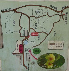 こどもの国横浜 椿の森 案内図