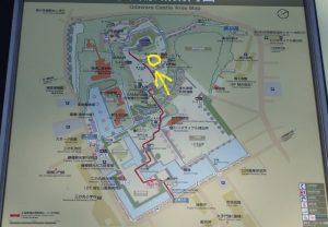 小田原城 本丸広場 桜