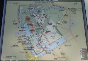 小田原城址公園 桜