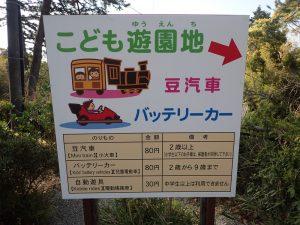 小田原城 こども遊園地 桜
