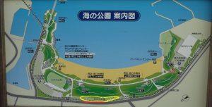 海の公園 臨時駐車場